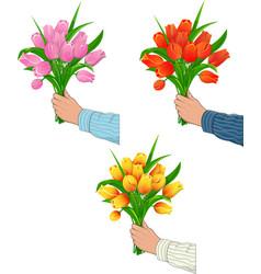 Tulips in hand man vector