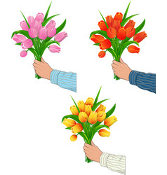 Tulips in the hand of man vector