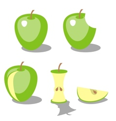 Apple color 02 vector