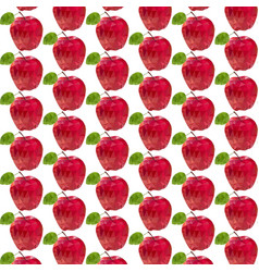 Apple is red vector