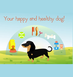 dog on green grass with set of vector image