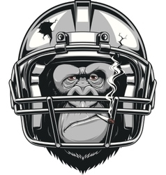 Funny gorilla vector image