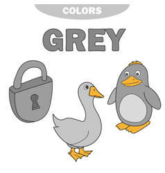 Learn the color gray - things that are gray color vector