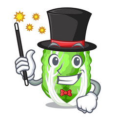 Magician chinese cabbage vegetable isolated on vector