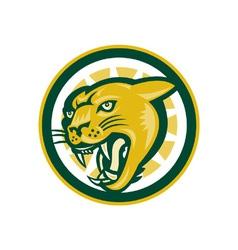 Mountain Lion Puma Big Cat Head vector