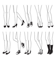 Outline of women legs with different shoes vector