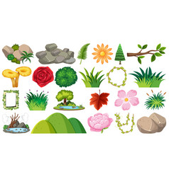 set ornamental plants vector image