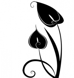 black flowers vector image