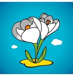 spring snowdrop vector image