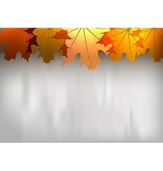 background autumn big top leaves red gray vector image vector image