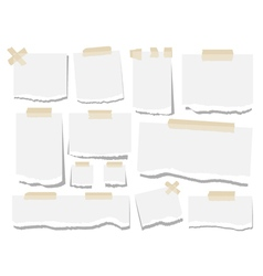 Blank paper torn page notes Office notepaper vector