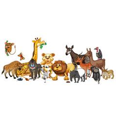 Different wild animals on white background vector