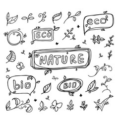 hand drawn natural eco bio ecology sketch vector image