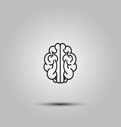 human brain on white vector image
