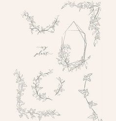 line drawing leaf branch wreaths frames vector image