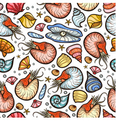 nautilus and shell seamless pattern vector image