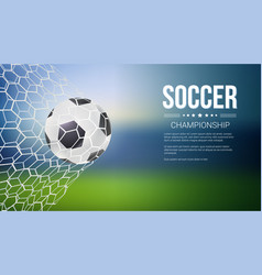 soccer game match goal moment with ball in the net vector image