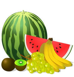 still life fruits banana watermelon grape kiwi vector image
