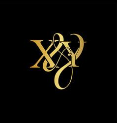 xy x y logo initial mark vector image