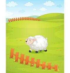 A sheep at the field vector
