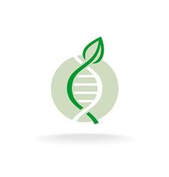 Plant nature genetic engineering symbol Green leaf vector image vector image