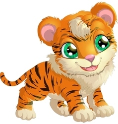 beautiful tiger on a white background vector image