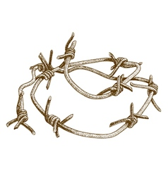 engraving barbed wire vector image