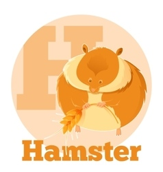 ABC Cartoon Hamster vector image