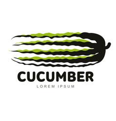 cucumber logo vector image