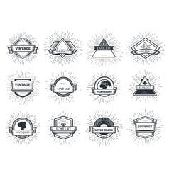 designers collection sunburst vector image