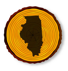 Illinois map on timber vector