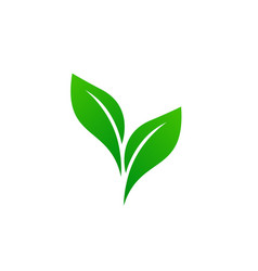 logo of green leaf ecology nature element vector image