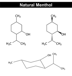Menthol - food and pharmaceutical additive vector