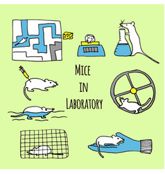mice in laboratory hand drawn vector image