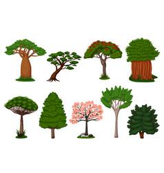 summer trees set isolated dragon baobab sakura vector image