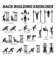 back building exercises and muscle building stick vector image