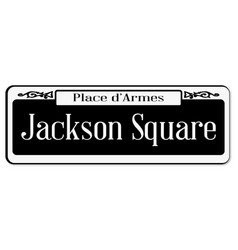 jackson square vector image