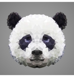 Panda low poly portrait vector image