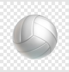 realistic white volleyball ball object vector image