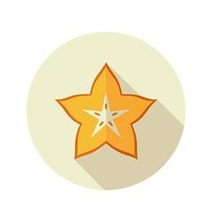 Starfruit Carambola Carom icon Tropical fruit vector image
