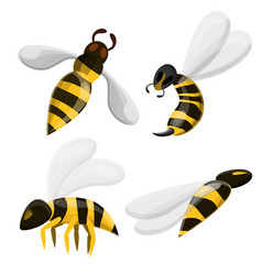 wasp icons set cartoon style vector image