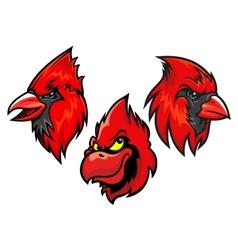 Cardinal bird heads set vector image