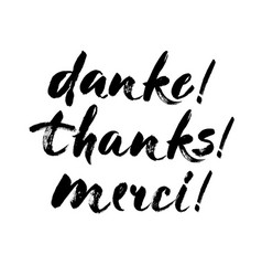 thank you lettering in english french german vector image vector image