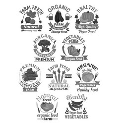 icons of farm fresh organic vegetables vector image vector image