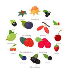 berries icons set cartoon style vector image