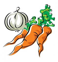carrots and garlic vector image vector image