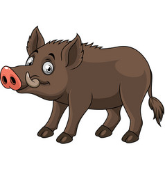 cartoon funny wild boar vector image