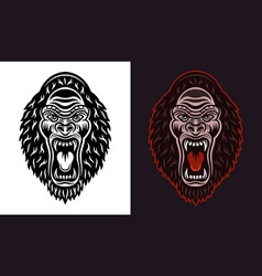 gorilla head with open mouth black and vector image