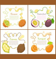 Kiwano and passion fruits vector