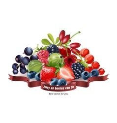 Mix fresh berries isolated on white background vector